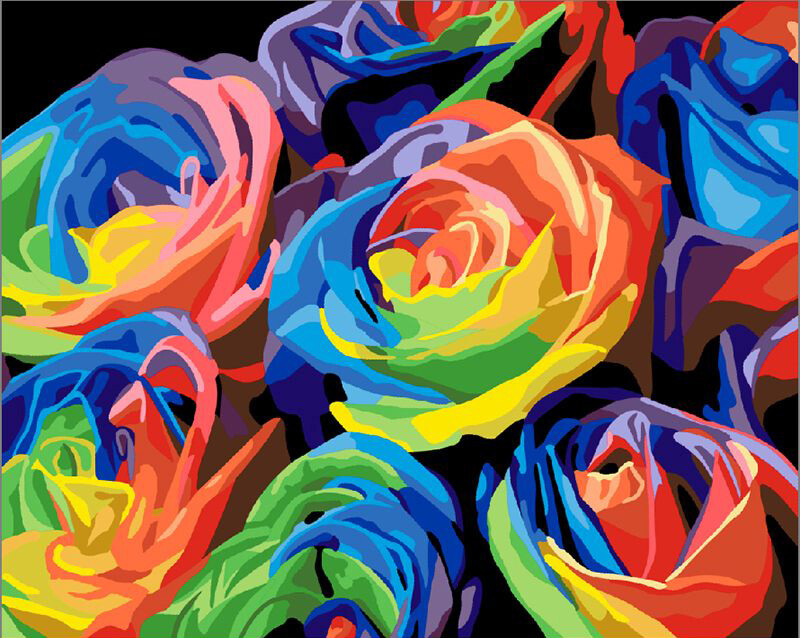 Paint by Number Kit Colourful Roses 40 x 50cm