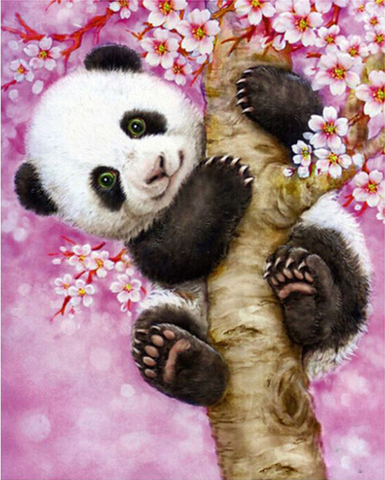 Paint by Number Kit Cherry Blossom Panda 40 x 50cm