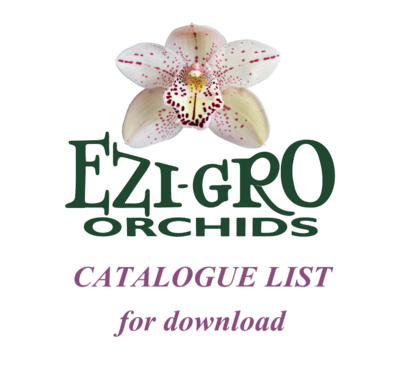 All Cymbidiums Flasks List 2020