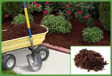Hemlock Blend Mulch (by Cubic Yard) M