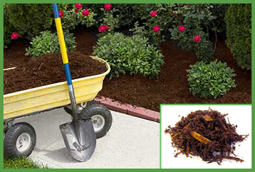 Brown Pine Mulch (by Cubic Yard)