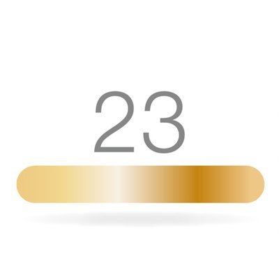 GOLDSTADT professional 23