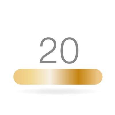 GOLDSTADT professional 20