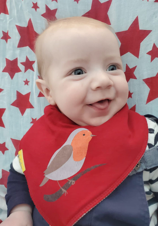 Babyboo Red Robin  Organic Cotton  Christmas Bib