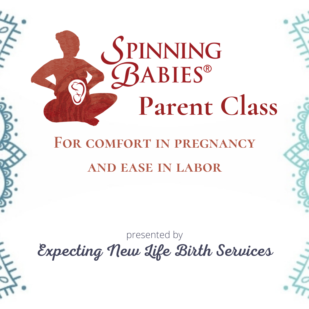 Spinning Babies® Parent Class (Private In-home Session)
