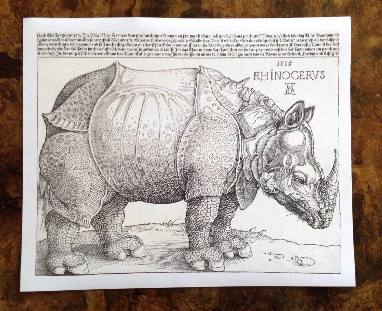 Rinoceronte Durero, impresión [No incluye marco]