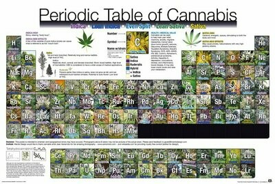 PERIODIC TABLE OF CANNABIS