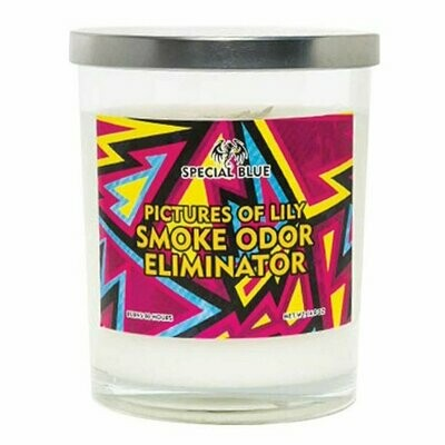 Special Blue Odor Eliminator Candle - 14.8oz/ Pictures of Lily