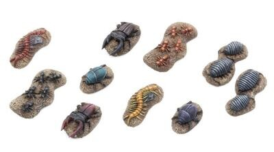 Giant Insects - Set 1 (10) Models Miniatures Figures RPG Tabletop Roleplay Games