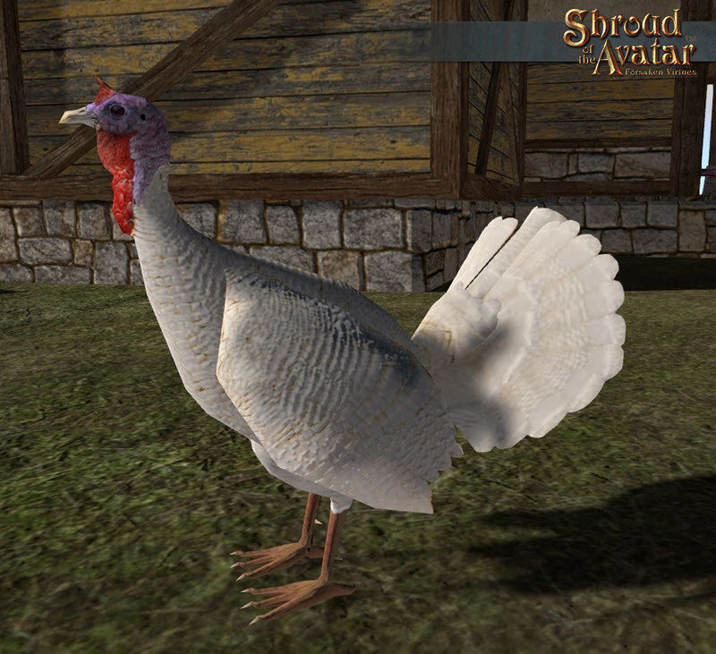 White Turkey Decoration Pet - Shroud of the Avatar