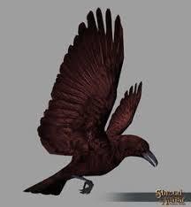 Blood Raven Decoration Pet - Shroud of the Avatar