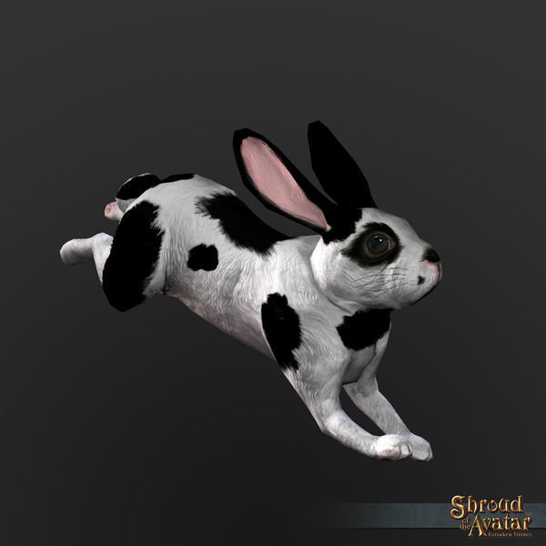 White Rabbit with Black Spots Decoration Pet - Shroud of the Avatar