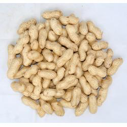 Bag of raw peanuts