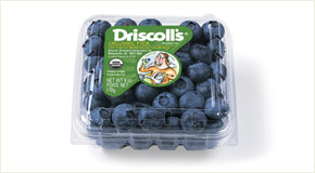 Driscoll's Organic blueberries 16oz