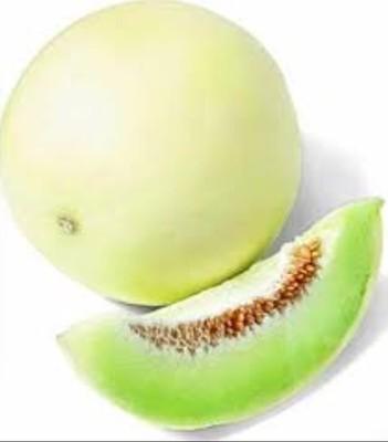 Honeydew Melon, whole