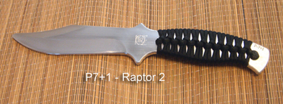 P7+1 - Raptor 2