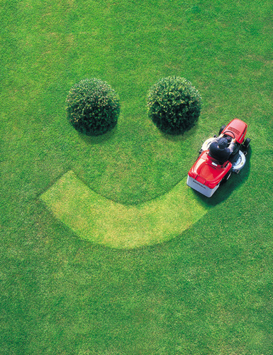 MOW & GO Lawn Mowing Service