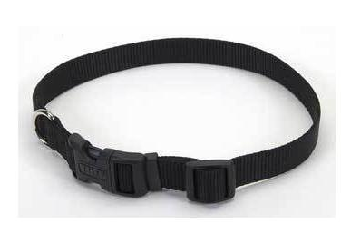 Coastal Style Nylon Adjustable Collar - for Small Dogs