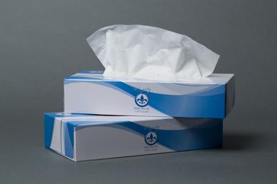 Royalty 2-Ply Virgin Flat Box Facial Tissue