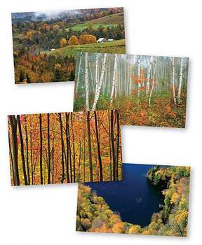 Autumn Trees In Vermont Note Cards