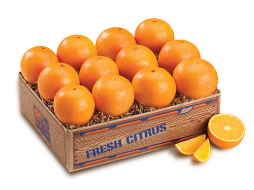 DIRECT DELIVERY - NAVEL ORANGES