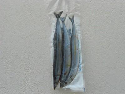 Blueys 3pk