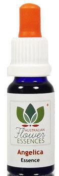 Angelica Blütenessenzen 15 ml