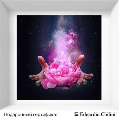 Подарочный сертификат Edgardio Chilini