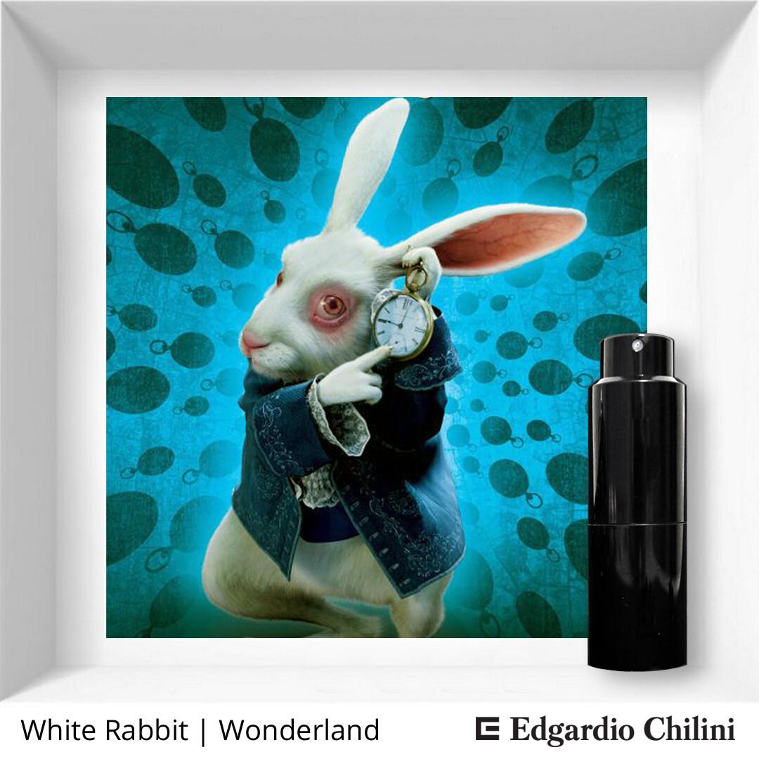 Edgardio Chilini White Rabbit