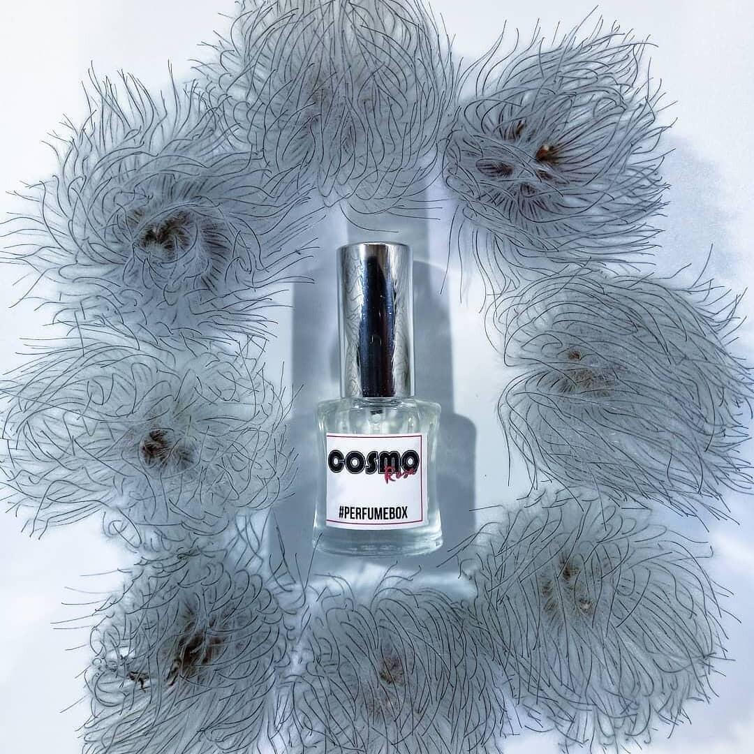 Perfumebox Cosmorosa eau de parfum