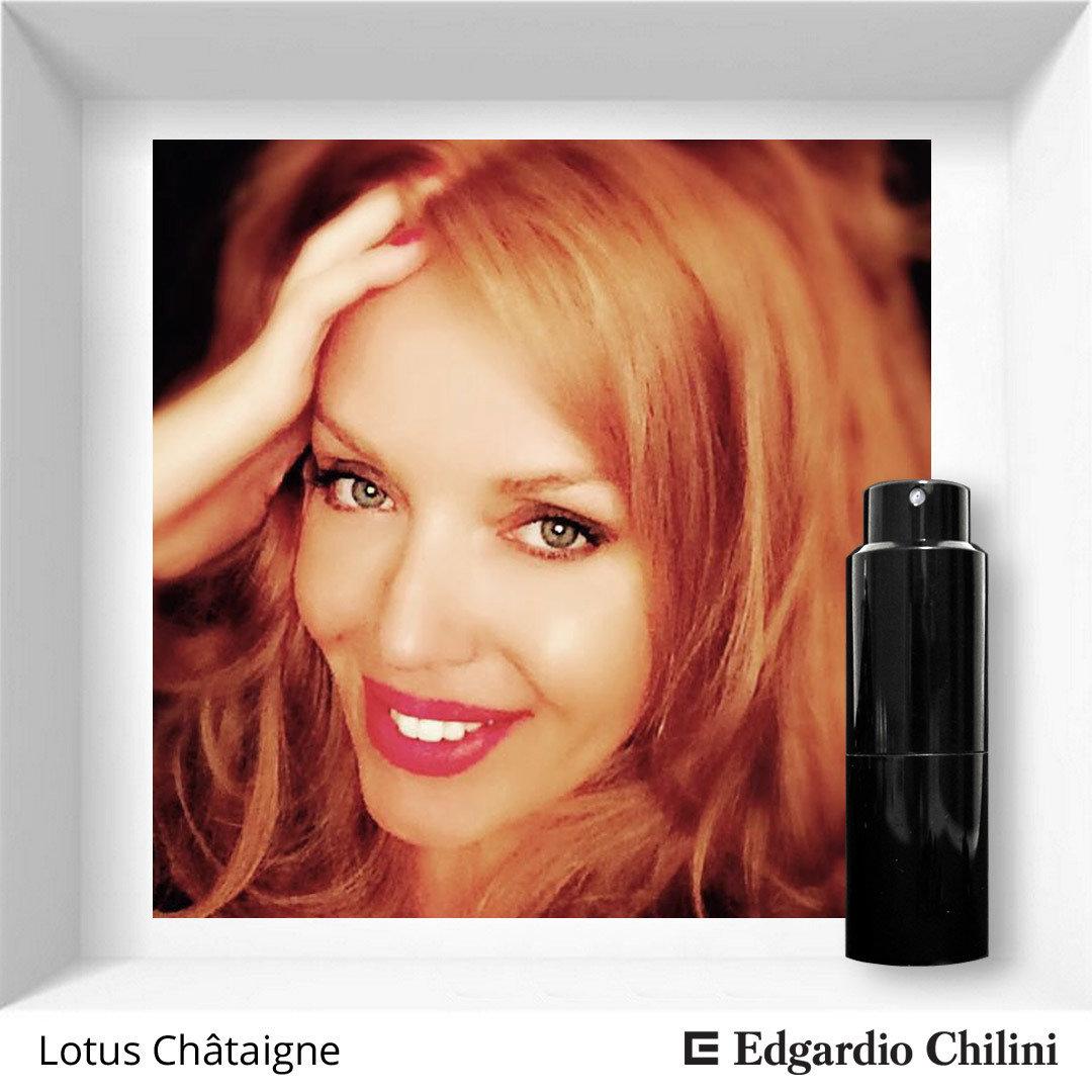 Edgardio Chilini Lotus Châtaigne