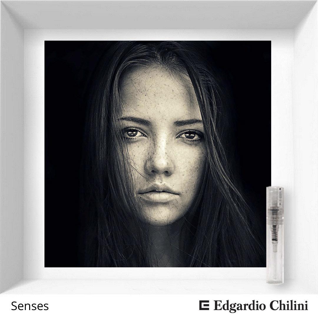 Edgardio Chilini Senses sample