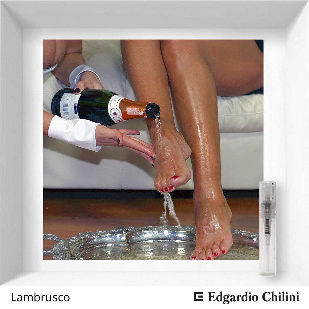 Edgardio Chilini Lambrusco sample