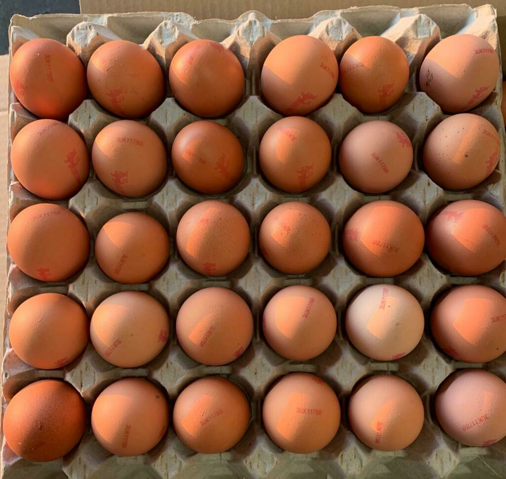 British Oakland 30 Medium Eggs
