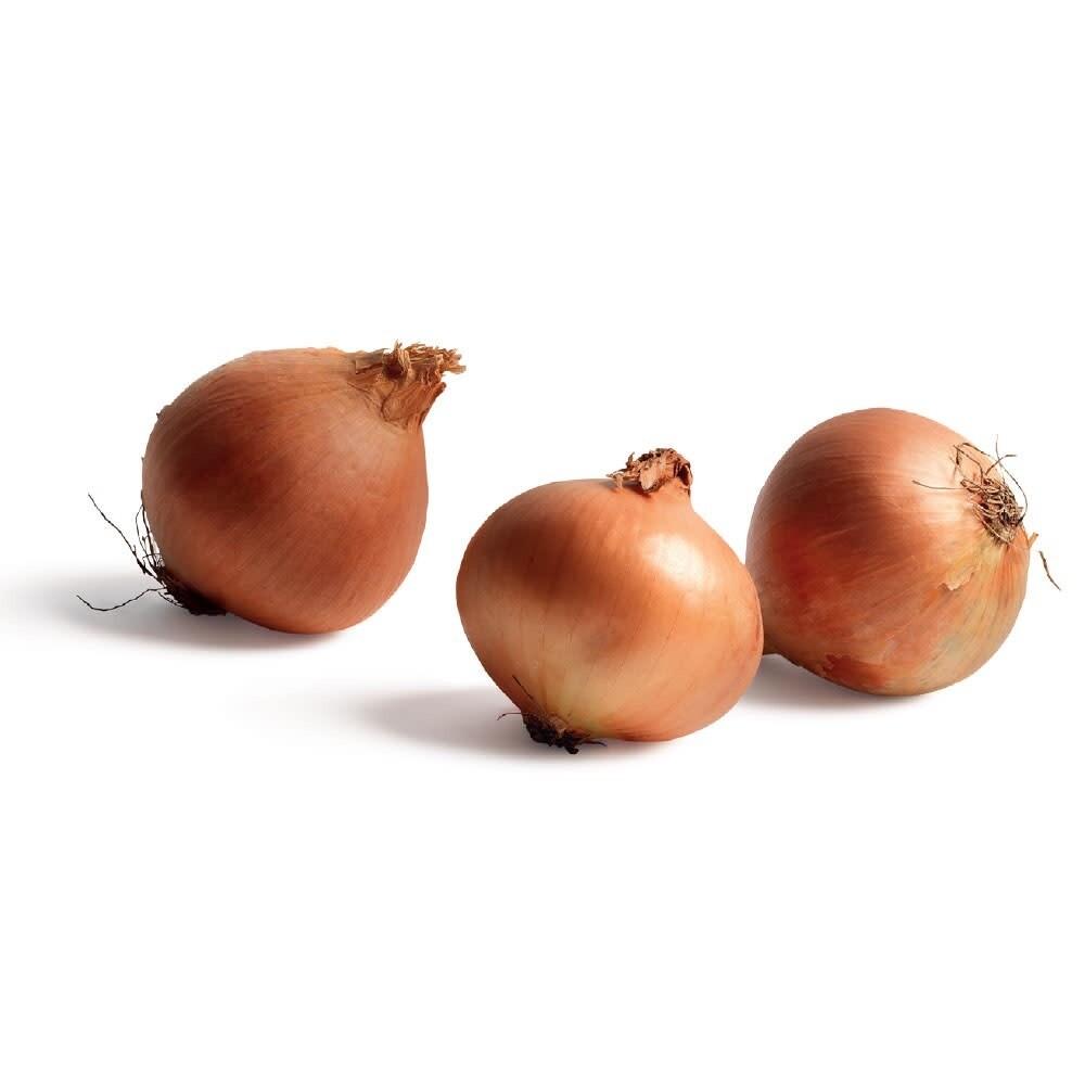 Net of 3 Onions