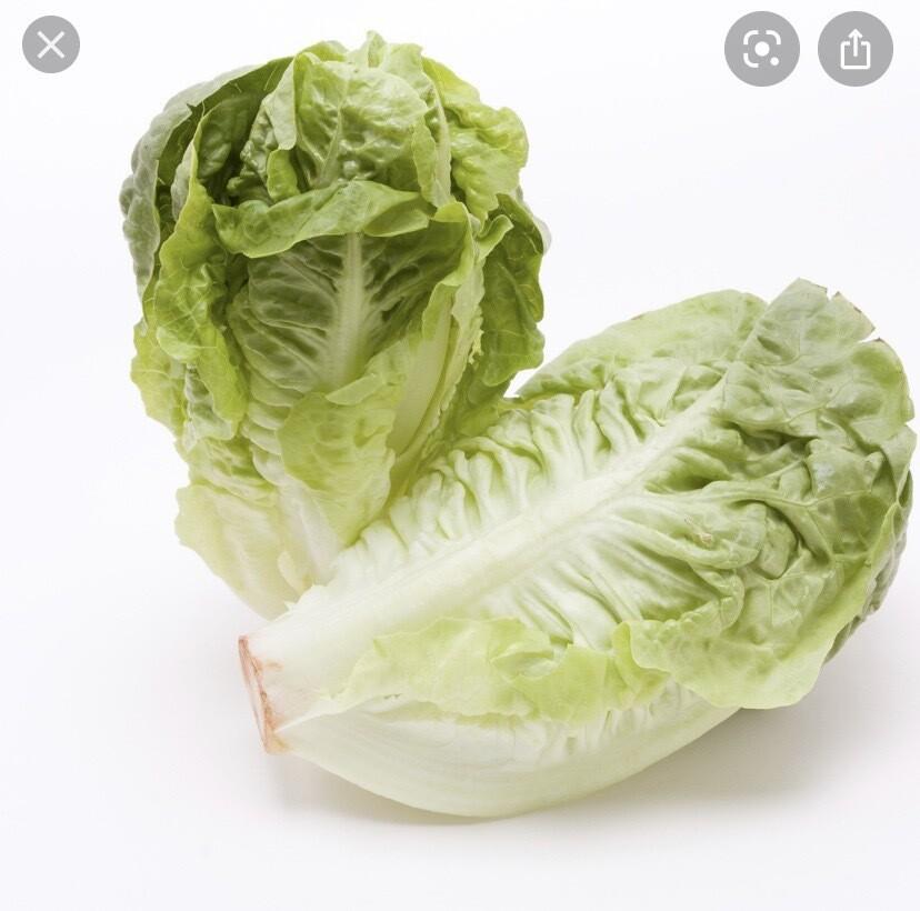 Little Gem Lettuce Pack Of 2