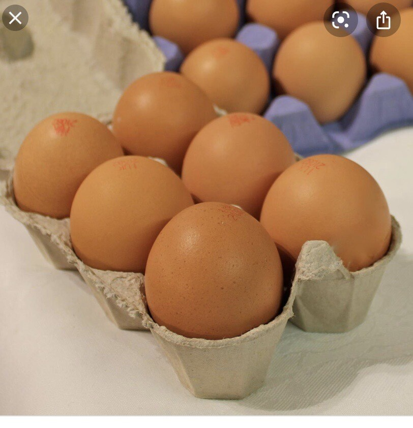 Box Of 6 Free Range Eggs