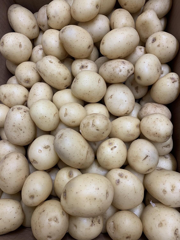 Salad Potatoes/washed Mids Per 1lb