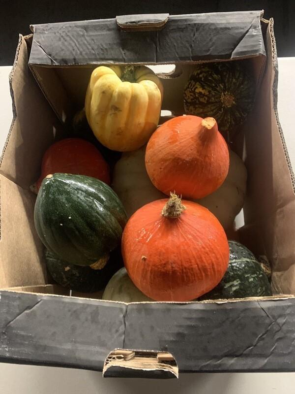 Mixed Pumpkin Box 10kg