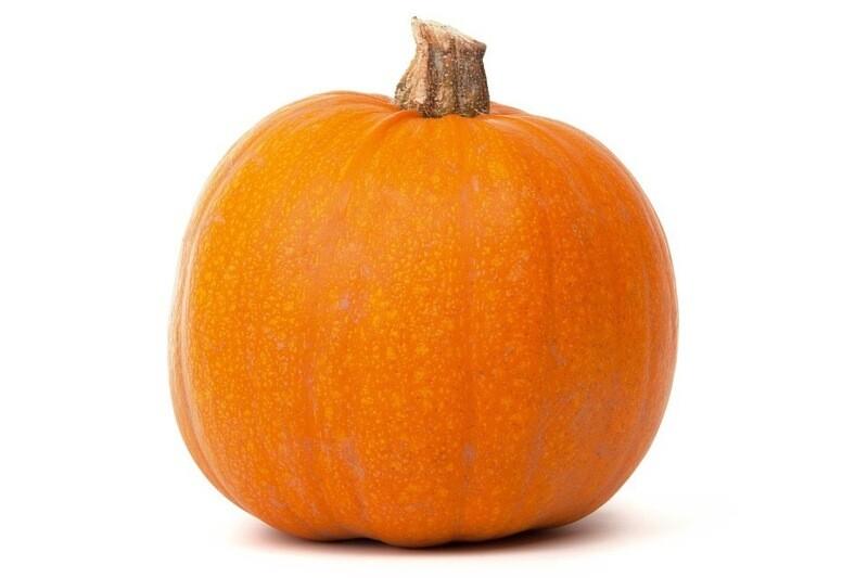 Pumpkin- Medium