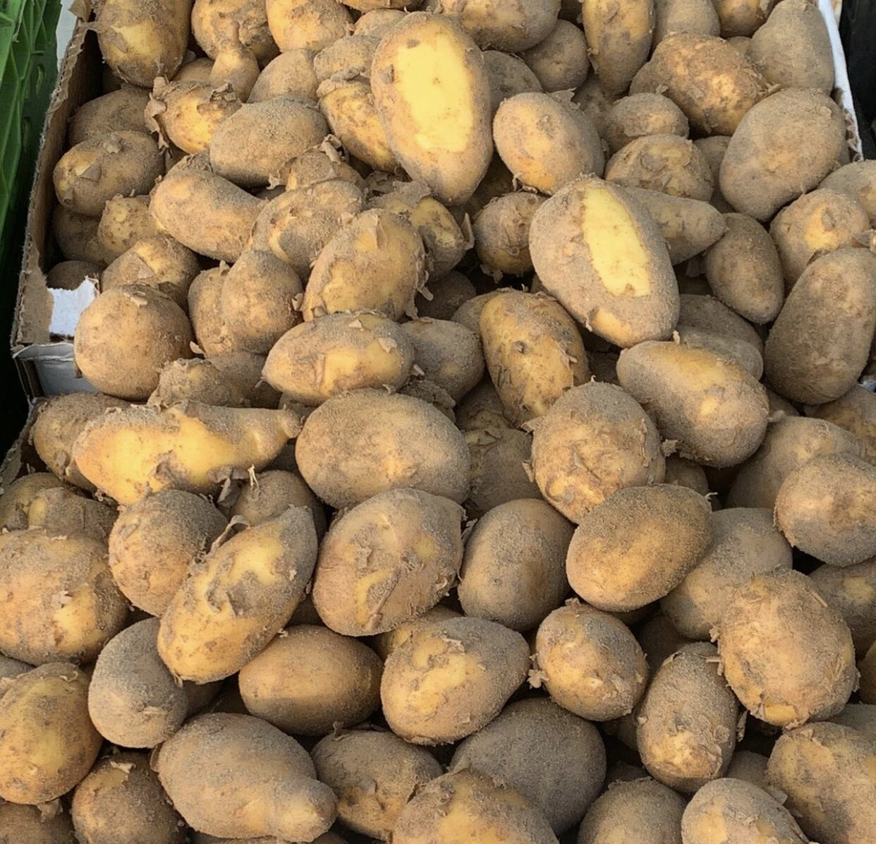 Italian New Potatoes Per Pound