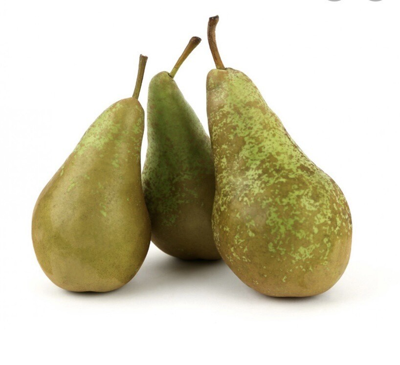 Conference Pears ( 3 )