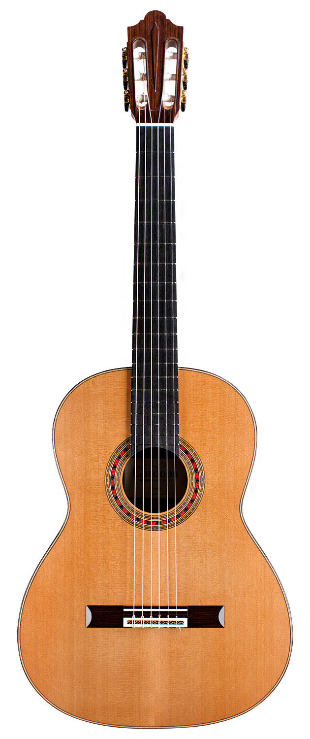 Cordoba Friederich - Luthier Select - All Solid Wood - Cedar top, Indian Rosewood back/sides