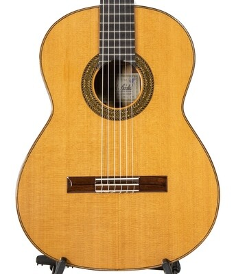 Estevé 12 - Professional Level Classical Guitar - Cedar top, Granadillo Back/Sides -  All Solid Woods - Handcrafted in Valencia, Spain