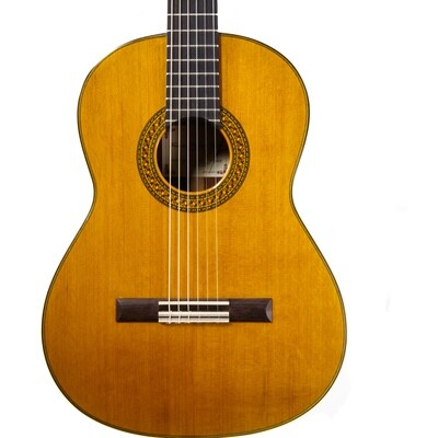 Francisco Navarro Concert Model - All Solid - Cedar top, Palo Escrito Back/Sides - 640mm