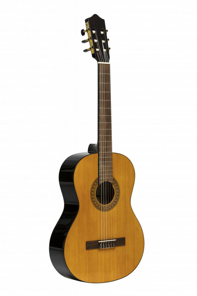 Bryan Station High School Guitar Special - Stagg Guitar