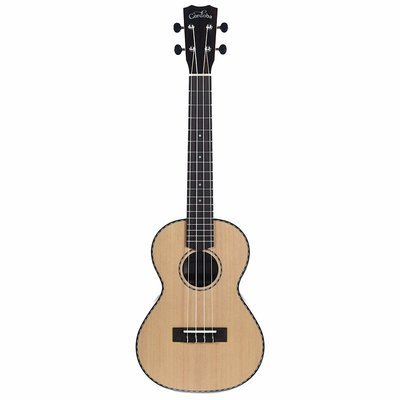 Cordoba 21T Tenor Ukulele - Solid Spruce top, Exotic Striped Ebony back/sides