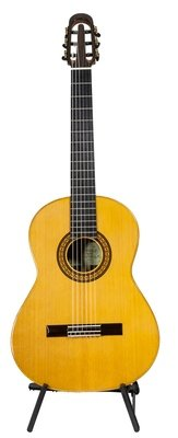 Yulong Guo Echoes - 650mm or 630mm Parlor size - Cedar Double Top, Indian Rosewood Back/Sides