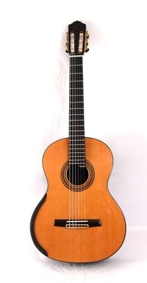 Calido CG 3222-CAX - Solid Cedar Top - Lattice Braced, Arched Indian Rosewood Back - Matte Finish
