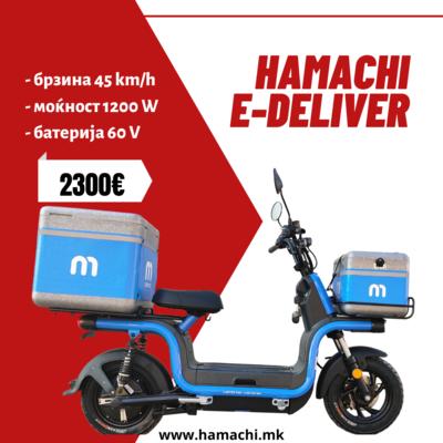 HAMACHI E-DELIVER